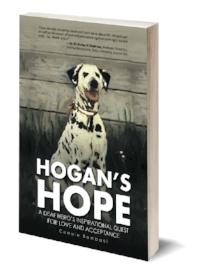 Hogans Hope 3D_thin500.jpg